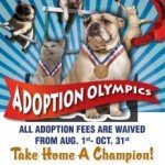 BARCS Goes For the Gold in Adoption Olympics Challenge