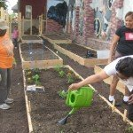 Pigtown Food For Thought Launches New Garden