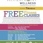 Waterfront Partnership Announces Free Fitness Classes
