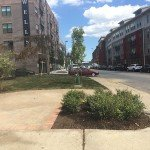 Charles and Wells Pocket Park Grand Opening on Friday