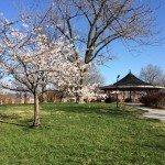 Riverside Park Community Yard Sale This Saturday