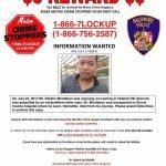 Baltimore Police Offer Reward for Information on Federal Hill Death
