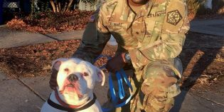 Dog Abandoned at Patterson Park Adopted by U.S. Army Specialist at BARCS