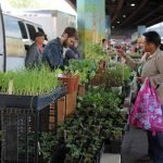 Baltimore Farmers' Market & Bazaar Returns This Sunday
