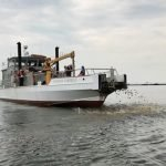 More Than Three Million Oysters Planted in the Patapsco River Today