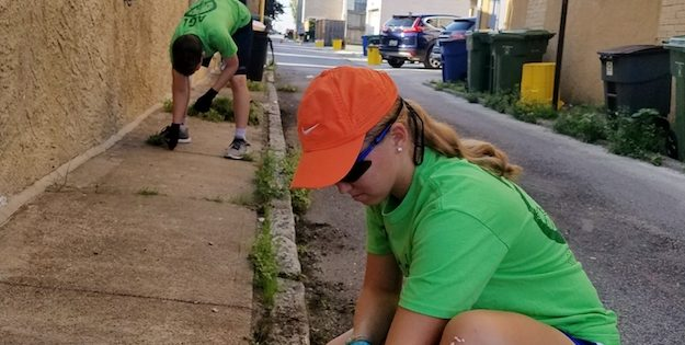 Local Teen Runs Weed-Pulling Business 'AGL Sidewalks' in South Baltimore