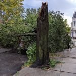 Tuesday Storm Causes Damage Around South Baltimore