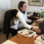 BARCS' 'Working Cats' Are Looking for Jobs