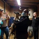 Baby Goat Stolen From Filbert Street Garden in Curtis Bay