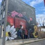 Photo Tour: New Murals Around South Baltimore